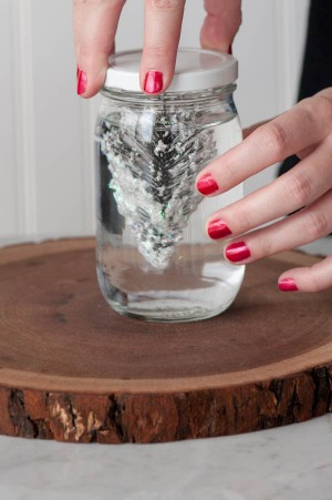 Mason Jar Snow Globe Picture 4