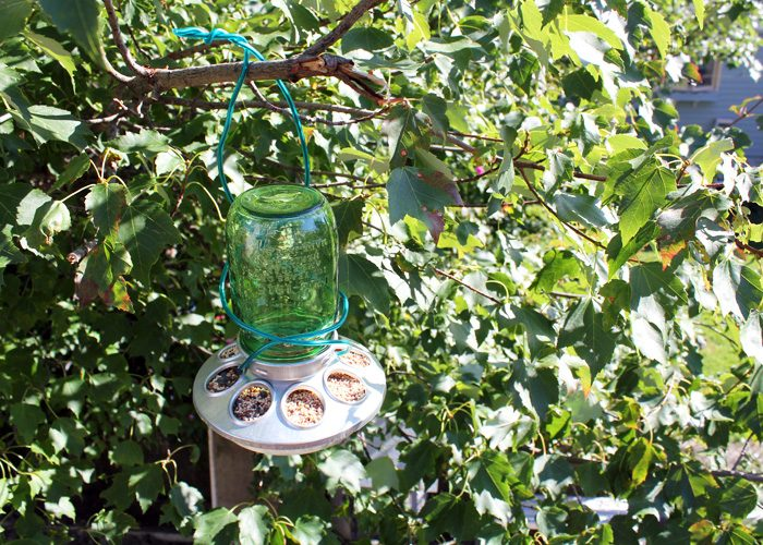DIY Mason Jar Bird Feeder
