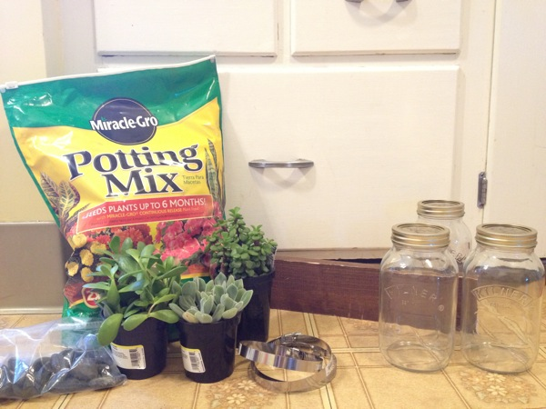 Mason Jar Planters Picture 1