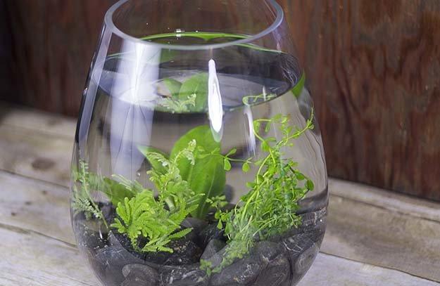 Mason Jar Fish Tank Vase Shelf